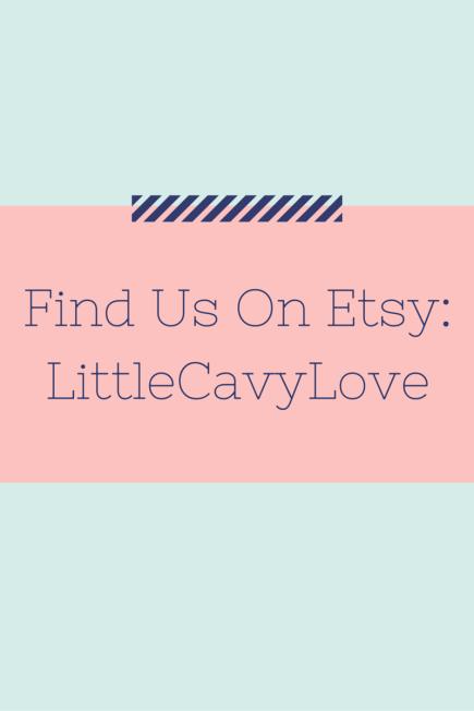 Etsy Store- LittleCavyLove