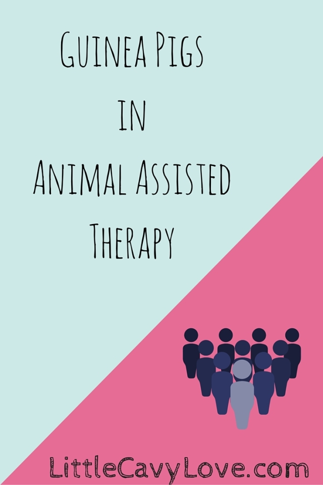social work and animal assisted intervention Evidence-based information on animal assisted therapy from hundreds of trustworthy sources for health and social care make better, quicker, evidence based decisions.