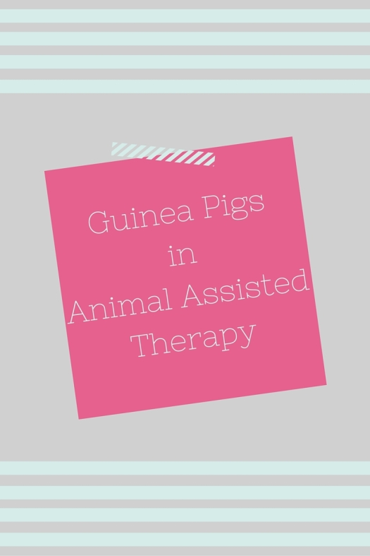 Guinea Pigs in Animal Assisted Therapy